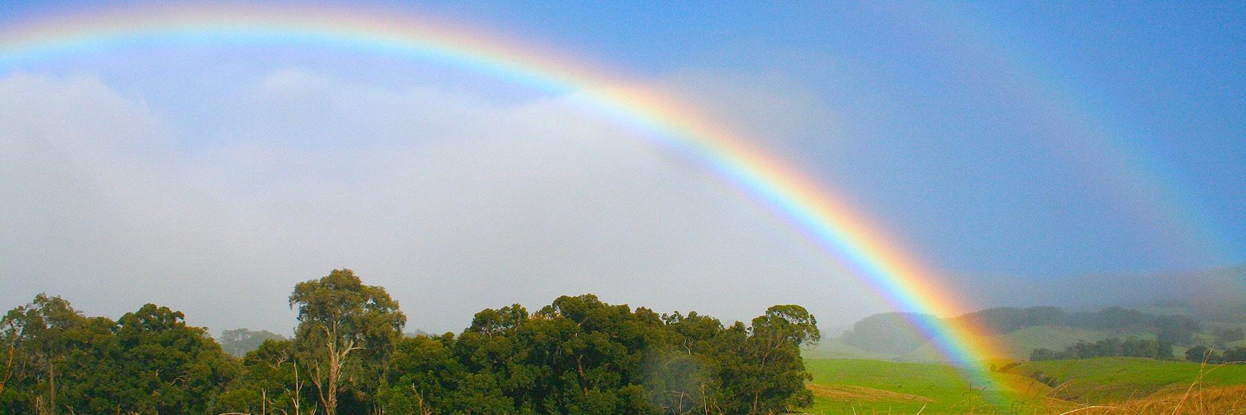hawaii-rainbow